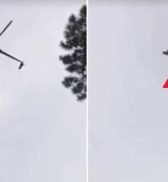 cerdo helicóptero