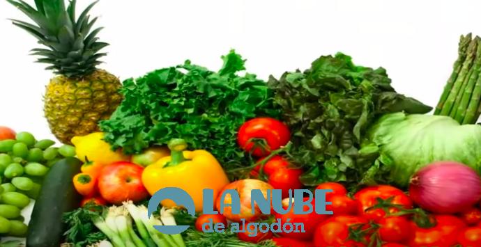 Aprende cómo usar los Vegetales en tu vida diaria