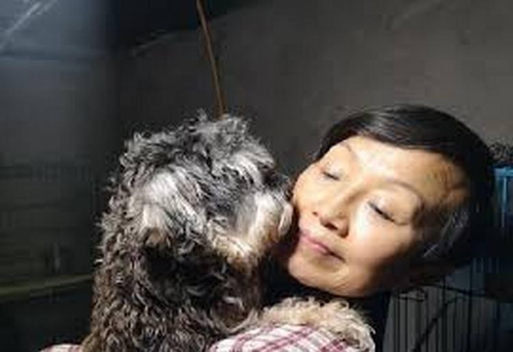La mujer con 1300 perros 100 gatos y 4 cuatro caballos de mascota