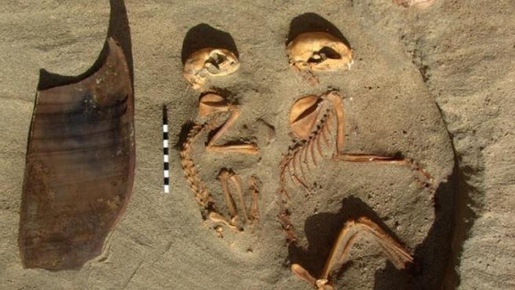 Descubren el cementerio de mascotas mas antiguo del mundo